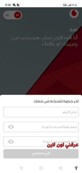 Ana Vodafone 1
